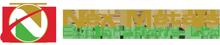 Nex Metals Explorations Ltd